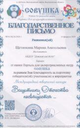 Защитнику Отечества посвящается Совушка февраль-2020